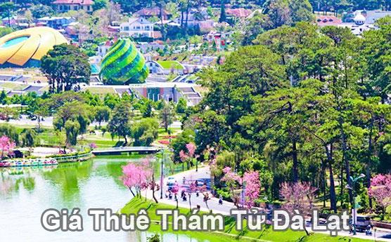 Giá thuê thám tử tư tại Lâm Đồng Đà Lạt bao nhiêu tiền?