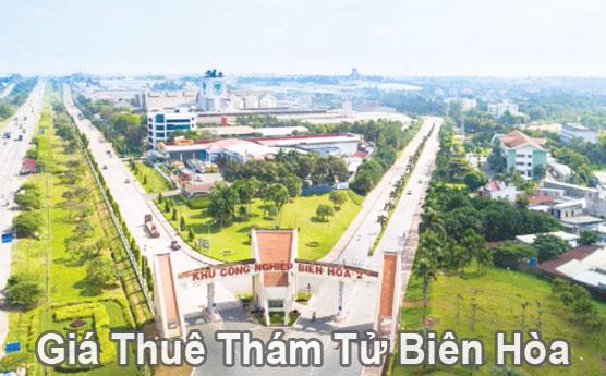 Giá thuê thám tử tư tại Biên Hòa Đồng Nai bao nhiêu tiền?