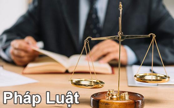 Ngành luật và nghề thám tử tư có những mối tương quan gì