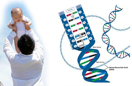Xét nghiệm DNA bao nhiêu và Dịch vụ xét nghiệm DNA có bảo mật không